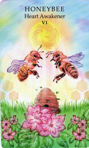 Honeybee - Heart Awakener -The Lovers - The Animal Wisdom Tarot Deck