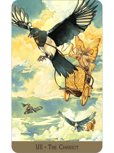 The Chariot - The Victorian Fairy Tarot Deck